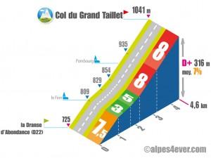 Versant EST du Col du Grand Taillet