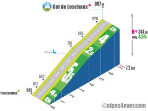 Col de Leschaux / versant Sud - variante 1