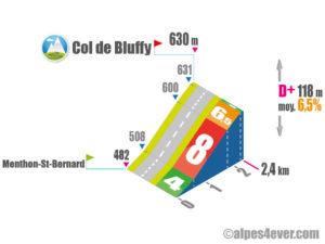 Col de Bluffy / Versant Sud direct