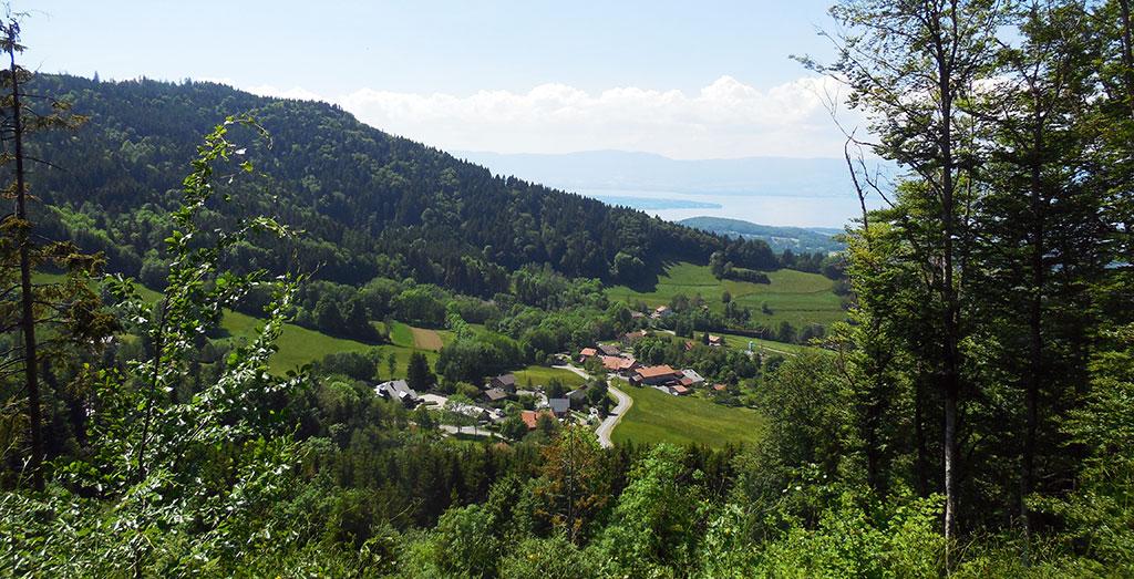 Depuis Orcier, une montée difficile mais dans un cadre agréable avec le Lac Léman en toile de fond (photo Alpes4ever).